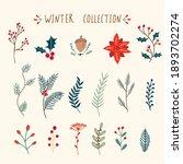 set of  christmas winter floral ...   Shutterstock . vector #1893702274
