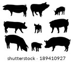 Set Of Pig Silhouettes. Vector...
