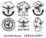 wild wasps black and white... | Shutterstock .eps vector #1894413094