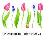 Watercolor Spring Flowers Set....