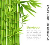 Realistic Green Bamboo Plant...