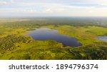 Peat Swamp Forest Landscape...