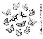 set of flying black and white... | Shutterstock .eps vector #189533831