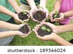 hands holding sapling in soil... | Shutterstock . vector #189566024