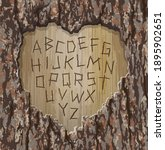 Alphabet Letters Carved Into A...