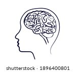 human head and brain on a white ...   Shutterstock .eps vector #1896400801