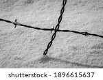Barbed Wire Fence In Snow