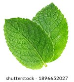 Spearmint Leaf Isolated On...