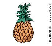 illustration of pineapple.... | Shutterstock .eps vector #1896676024
