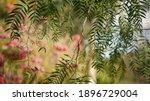 Lucky Bells Pink Flower In...