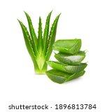 aloe vera plant isolated on... | Shutterstock . vector #1896813784