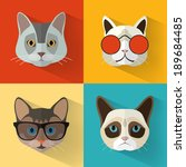 Animal Portrait Set with Flat Design/ Cat Collection / Vector Illustration - stock vector