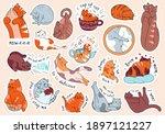 large set of cute cartoon cat...   Shutterstock .eps vector #1897121227