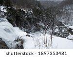 Chittenango Falls From Above...