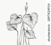 monstera leaves line art.... | Shutterstock .eps vector #1897424914