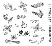 hand drawn set with herbs and... | Shutterstock .eps vector #1897561144