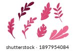 collection of plant. abstract... | Shutterstock .eps vector #1897954084