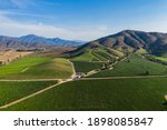 Aerial View Of Vineyard At...