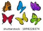 set of colorful butterflies.... | Shutterstock .eps vector #1898228374