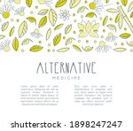 alternative medicine banner...   Shutterstock .eps vector #1898247247