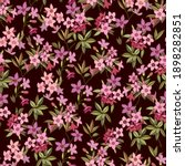 floral seamless pattern with... | Shutterstock .eps vector #1898282851