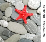 starfish and pebbles as background - stock photo