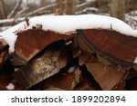 Snow Covered Stack Of Firewood