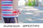 little boy holding red seed on...   Shutterstock . vector #1899257491