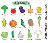 15 vegetables collection.... | Shutterstock .eps vector #1899320821
