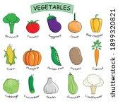 15 vegetables collection.... | Shutterstock .eps vector #1899320821