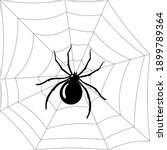 black spider on spiderweb... | Shutterstock .eps vector #1899789364
