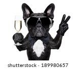 French Bulldog With A ...