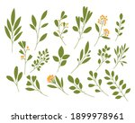 set of vector branches with... | Shutterstock .eps vector #1899978961