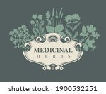 vector banner or label with the ... | Shutterstock .eps vector #1900532251