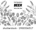 beer ingredients vector... | Shutterstock .eps vector #1900536517
