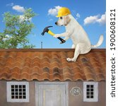 A dog builder in a construction helmet with a hammer is fixing a roof.