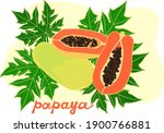 ripe papaya  whole and cut in... | Shutterstock .eps vector #1900766881