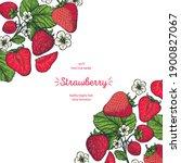 strawberry frame  hand drawn...   Shutterstock .eps vector #1900827067