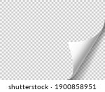 curled page with shadow on... | Shutterstock .eps vector #1900858951
