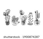 set cactus  black outline ... | Shutterstock .eps vector #1900874287