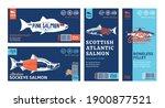vector salmon horizontal and... | Shutterstock .eps vector #1900877521
