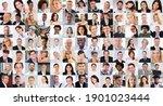 professional people in uniform... | Shutterstock . vector #1901023444