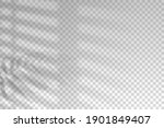shadow blinds. light from... | Shutterstock .eps vector #1901849407