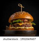 fresh burger sandwich ...