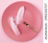 Two Feathers In The Pink Plate...