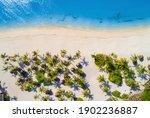 Aerial View Of Umbrellas  Palms ...