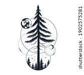 hand drawn tree badge with fir  ...   Shutterstock .eps vector #1902575281