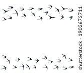 flying swallow birds...   Shutterstock .eps vector #1902673711