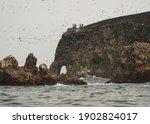 Islas Ballestas Islands Pacific ...