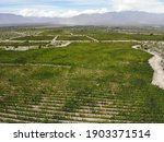 Drone picture from Cafayate Wine plantation agentina